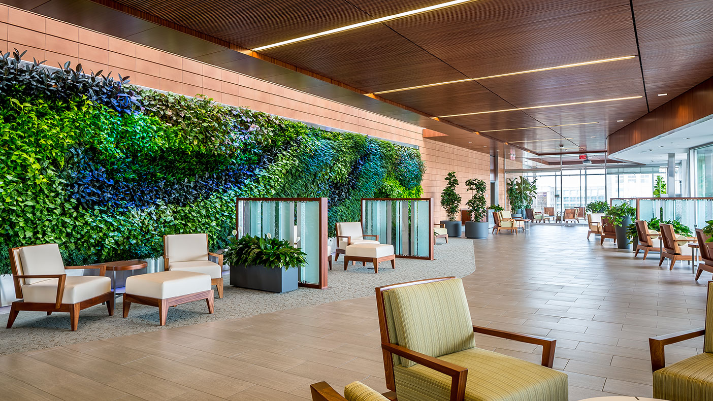Informal meeting areas were designed to take advantage of natural light providing needed respite for staff. The living plant wall connects to users to natural elements.
