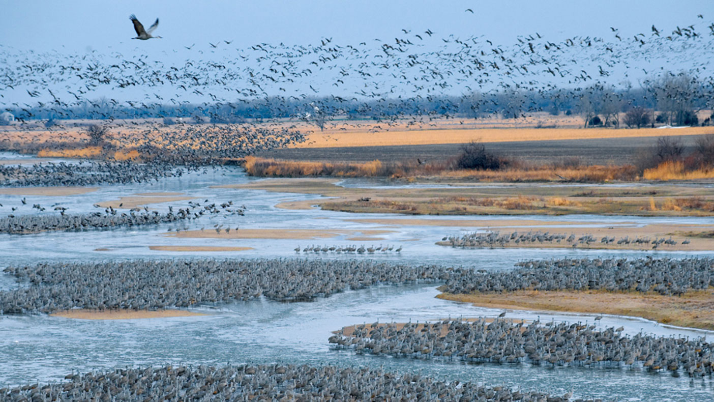 This innovative approach will improve management of the Platte River by providing reliable water supply projections and maintaining healthy ecosystems.
